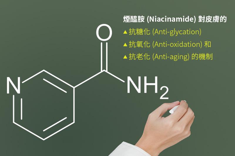 煙醯胺(Niacinamide)對皮膚的抗糖化(Anti-glycation)抗氧化(Anti-oxidation)和抗老化的機制